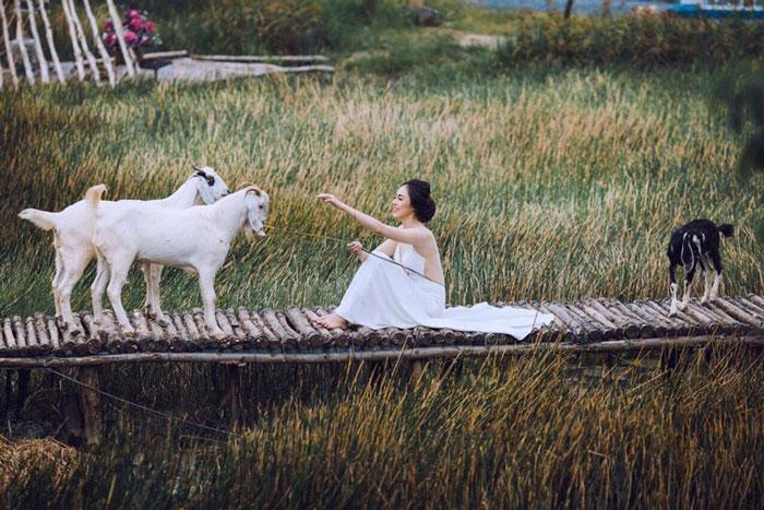 Hình cưới chụp tại Việt Phương Sentosa